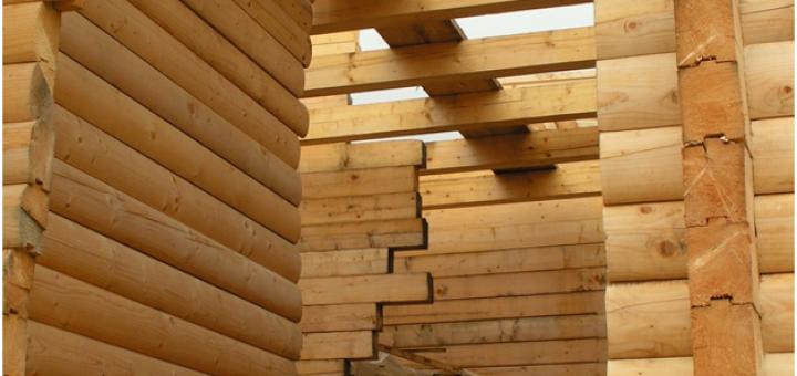 Timber Expo returns to Birmingham NEC2